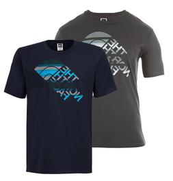 The North Face Striped Tiger Ombre Logo Tee T-Shirt Mens Gre